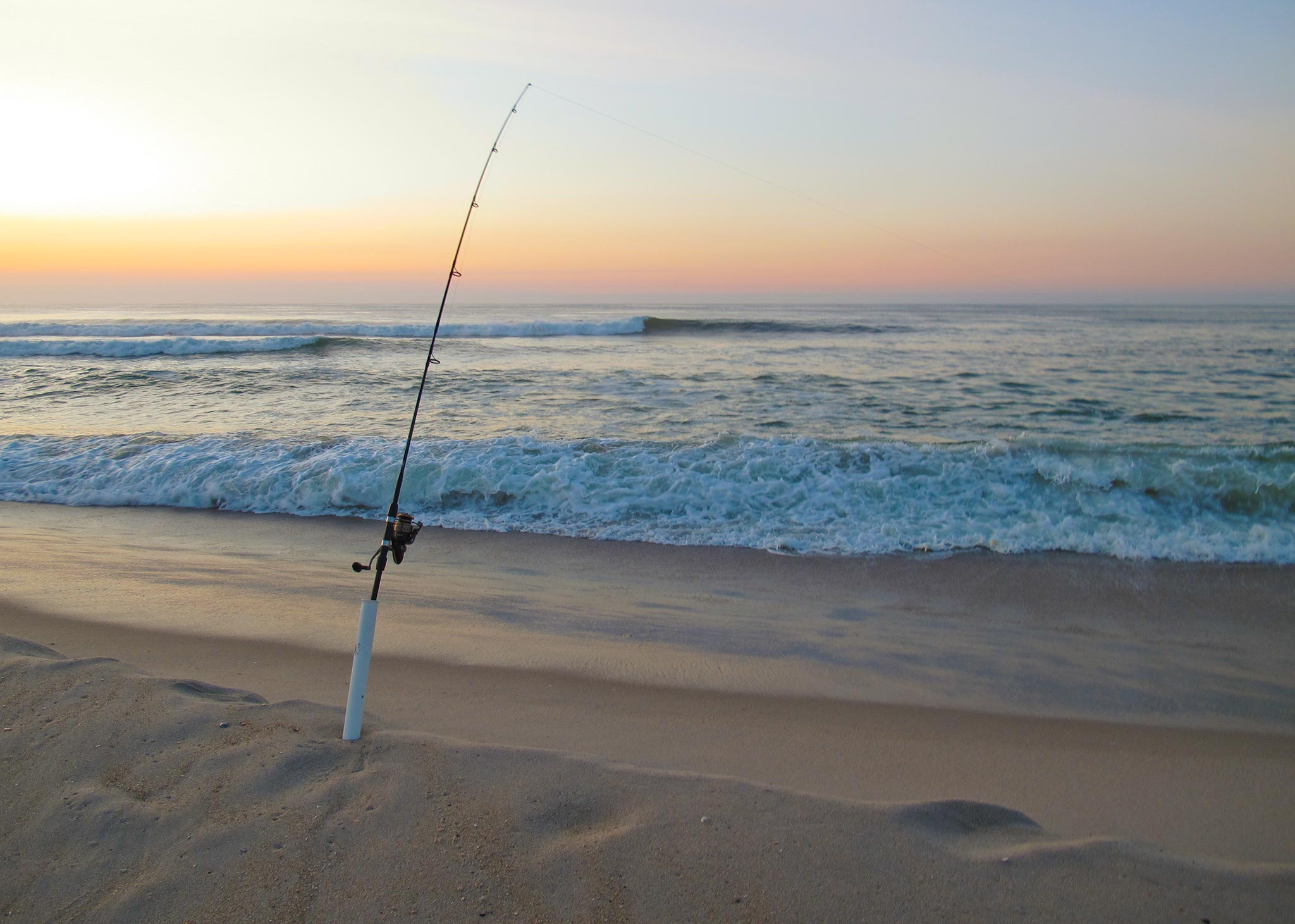 Sunrise fishing surf city nj janine feeney for Surf fishing nj