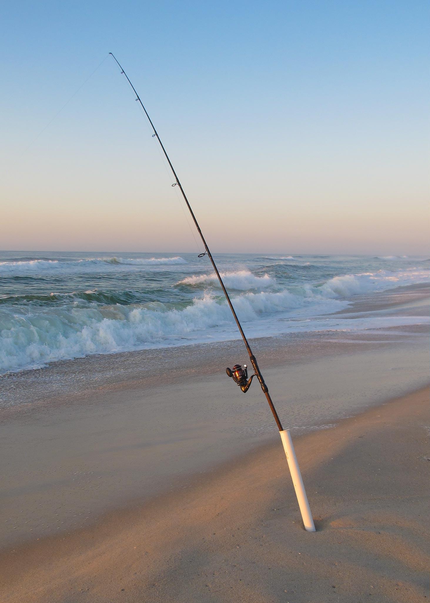 Sunrise fishing surf city nj janine feeney for Nj surf fishing report